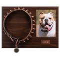 Bronze - Pet Collars - Product Code #DC11