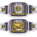 "Championship Belt - ""Top Sales"" Silver"