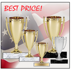 Cups - Econo Stipple Cups BEST PRICE!