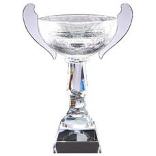 Cups - CRY126 - Optical Crystal Trophy - 15""