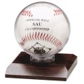 Display Case - Acrylic Ball Holder award