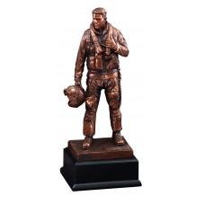 Military Hero Airforce Award