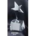 Star Awards - Silver Star Award