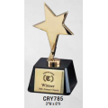 Star Awards - Gold Star Award